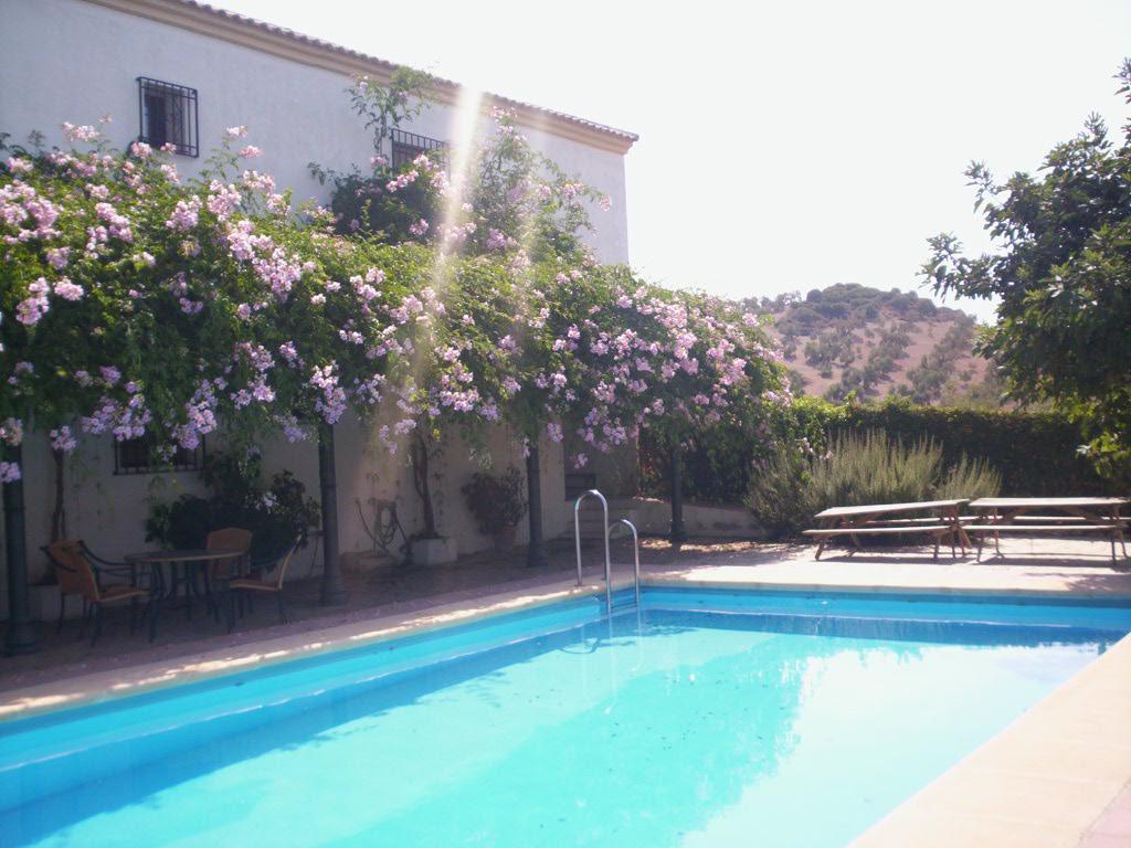 location andalousie avec piscine villa 5. Black Bedroom Furniture Sets. Home Design Ideas